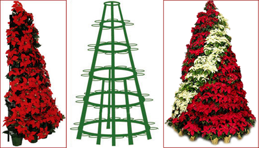 Pointsetta Christmas Tree.Christmas The Poinsettia Tree Fixture